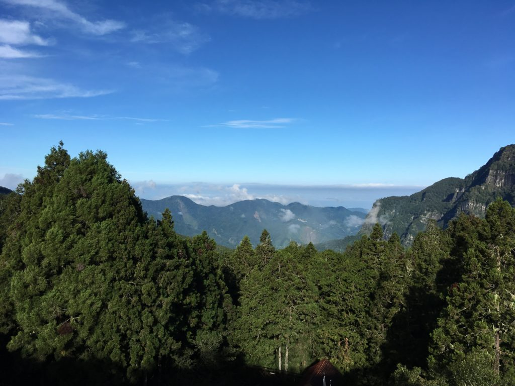 Taiwan hiking alishan forest expat hikers