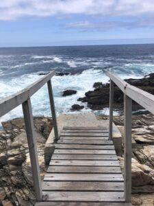 bridge waterfall trail tsitsikamma